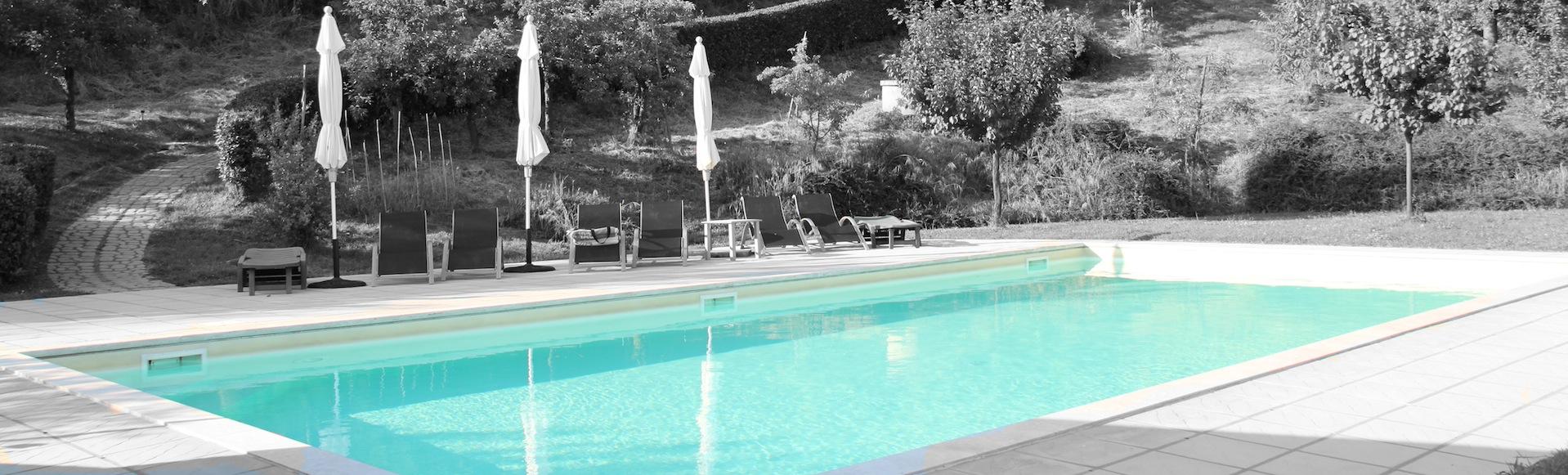 Groot zwembad met veel privacy